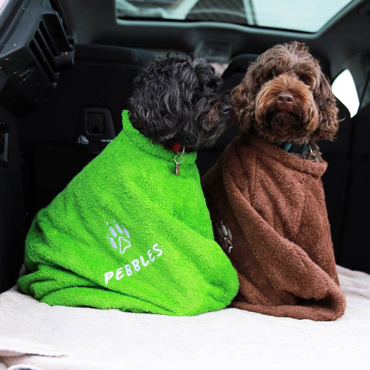 Personalised Dog Coat notonthehighstreet.com love this fitted towel idea!