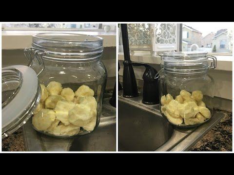 DIY Garbage Disposal Refreshers - YouTube