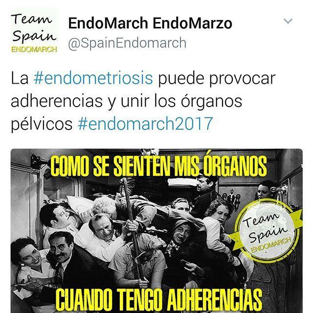 La campaña de EndoMarch Team Spain es genial. La realidad de las mujeres con endometriosis contada con un toque de humor. Síguelas en Twitter @SpainEndomarch y Facebook @EndomarchTeamSpain   #endometriosis #dolor #menstruación #mujer #salud #feminismo #endowarrior #endoguerreras #endoguerrera #dolor