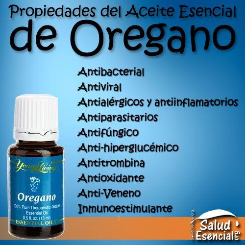 Propiedades-Del-Aceite-Esencial-De-Oregano