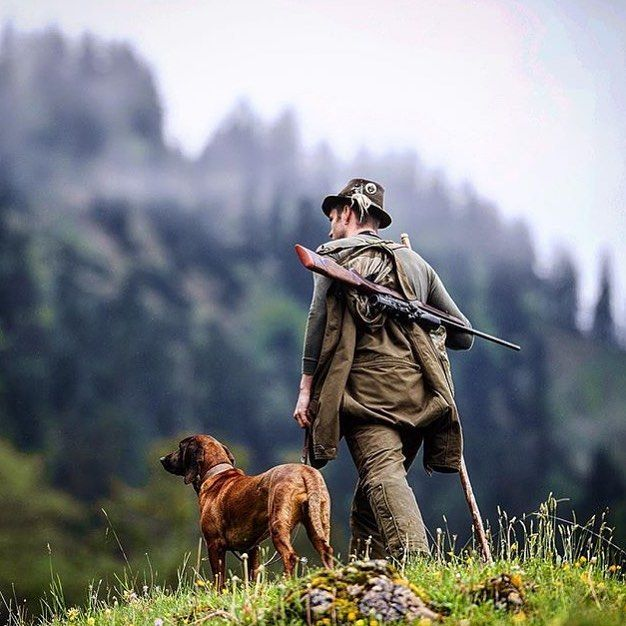 School Shooting Wyoming: 1157 Best Images About Camping, Hunting, And Fishing On