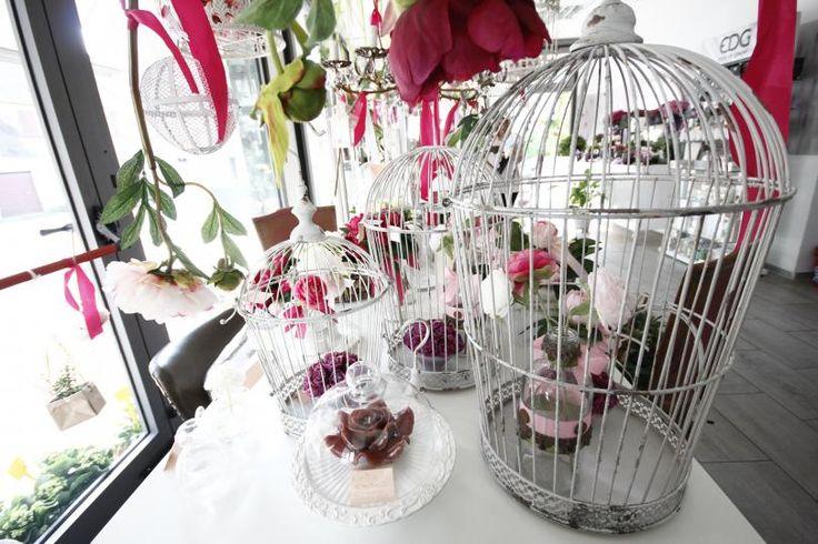 Sotto #Natale, decorate la vostra #casa con la #voliera in ferro sbiancato di Art Du Fleur, in offerta su #Mantovapon a soli 85 € anziché € 125,00!  Risparmierete ben 40 € con questo strepitoso #coupon! Però bisogna affrettarsi! L'offerta scadrà fra 6 giorni...  http://www.mantovapon.it/deals/voliera-in-ferro-sbiancato_87.html