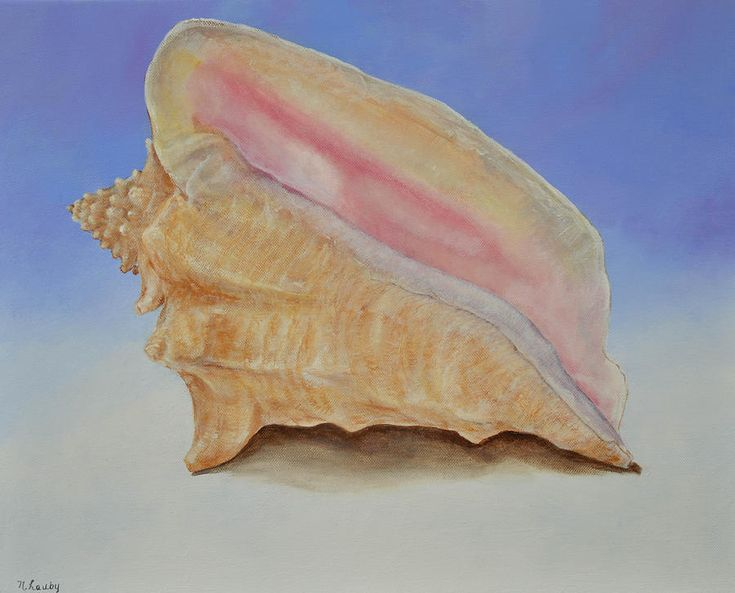 how to clean a conch shell