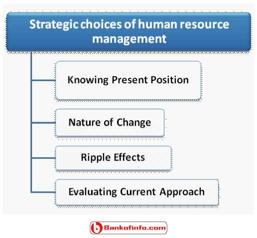 strategic role of human resource management essay Comparing and contrasting selected countries allowed a deeper understanding of the practical and crucial role of human resources management in health care proper management of human resources is critical in providing a high quality of health care a refocus on human resources management in health care and more research are.