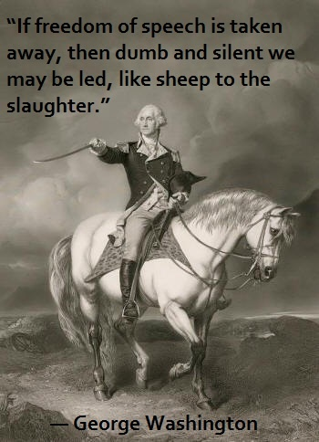 Revolutionary War Quotes Custom 36 Best George Washington Quotes Images On Pinterest  George