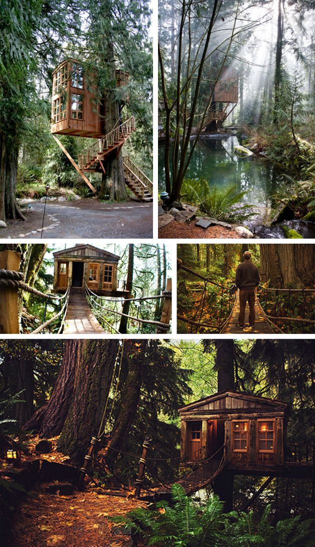 images treehouse | ... real place you can visit! Check out Treehouse Point in Washington