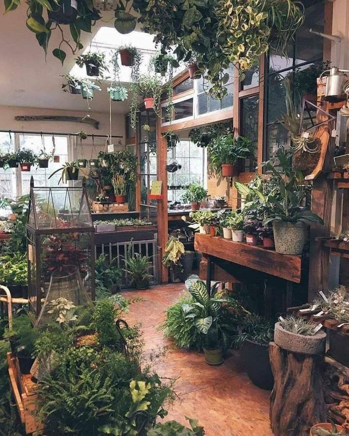 If I had a garden shop behind my house, just like that! The best of home indoor 2017 - garden design - If I had a garden shop behind my house, just like that! Best of Home Indoor - Garden Shop, Dream Garden, Home And Garden, Garden Living, Garden Homes, Garden Art, Glass House Garden, Glass Green House, Herb Garden