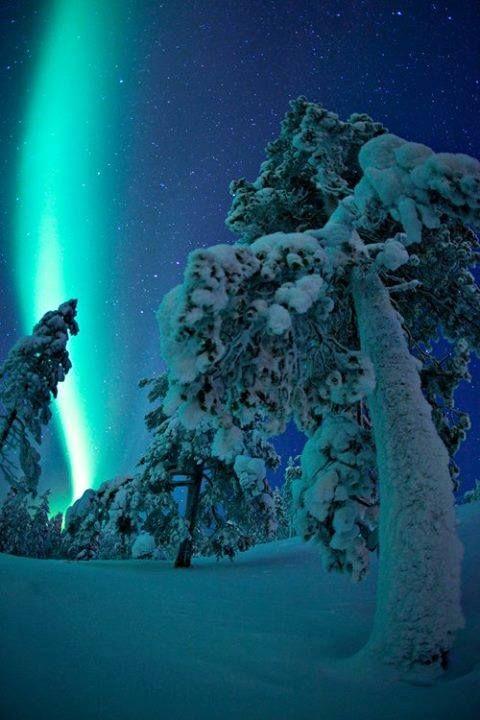 Aurora borealis and snow from Sodankylä, Finland.
