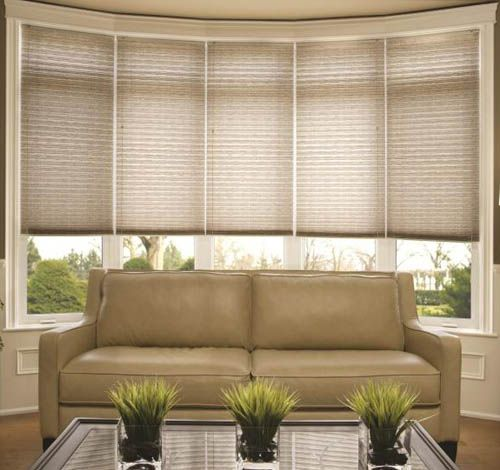 Accordia Light Filtering Cellular Shade Pleated Shades