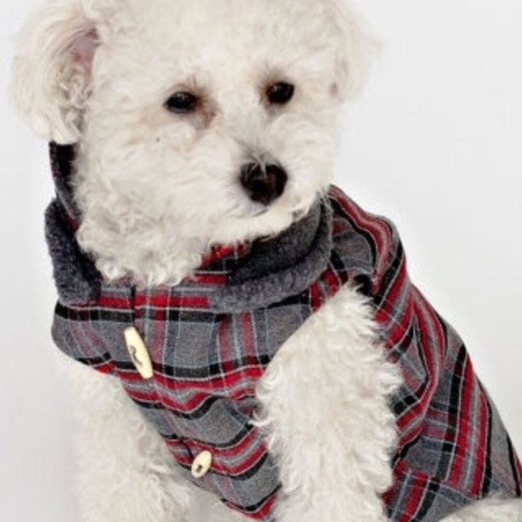 Hey, check out what I'm selling with Sello: Plaid dog coat http://amberlsu.sello.com/shares/k1Nnb