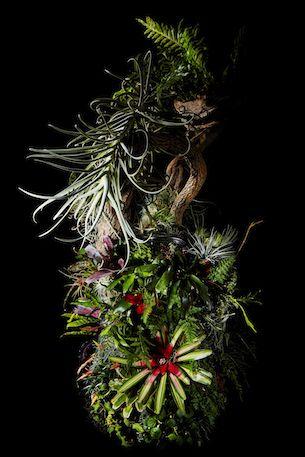 Botanical Ashtray by Makoto Azuma