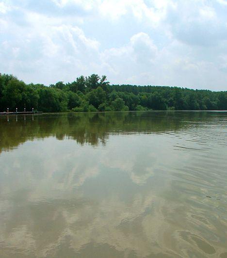 Tiszaroff. Az Árpád-kori település a falusi turizmus egyik legkedveltebb célpontja, mely nemcsak csenddel ajándékoz meg, de a víz közelségét is élvezheted. Tegyél a Tisza mellett egy nagy sétát, emellett a környékbeli tanösvényeket is keresd fel, hisz a terület a Közép-Tiszai Tájvédelmi Körzet része, illetve a Hortobágyi Nemzeti Park által is védett.