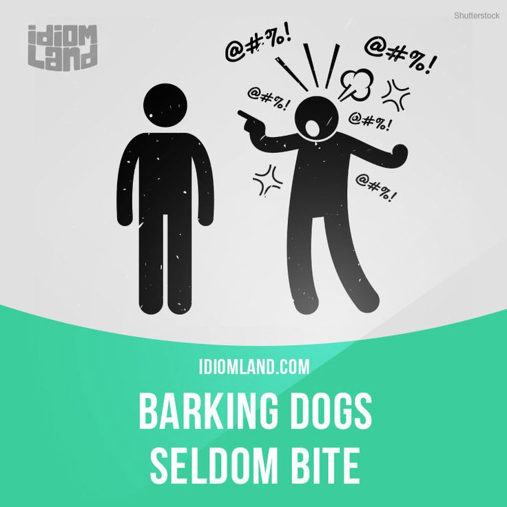 Meaning Barking Dogs Seldom Bite