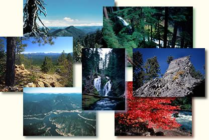 Rogue River, designated as wild and scenic by Congress. Hiking, rafting, and more.