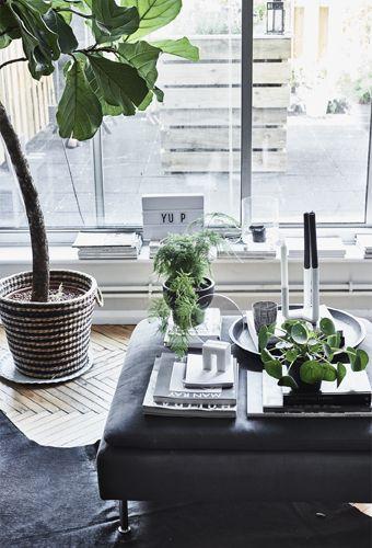 440 best IKEA Wohnzimmer - mit Stil images on Pinterest Ikea - wohnzimmer ideen ikea
