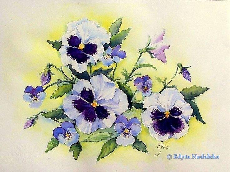 Edyta Nadolska Watercolor Art - 'Sweet pansies'