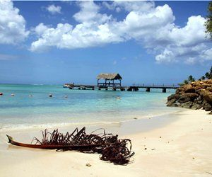 Τομπάγκο, Καραϊβική