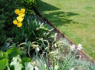 Shop   EverEdge   Flexible Metal Garden Edging And Steel Raised Beds. Ideal  For Lawns, Landscape Gardens, Paths, Flower Beds And Vegetable Growing