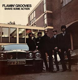 Flamin' Groovies - Shake Some Action (180 Gram Vinyl)