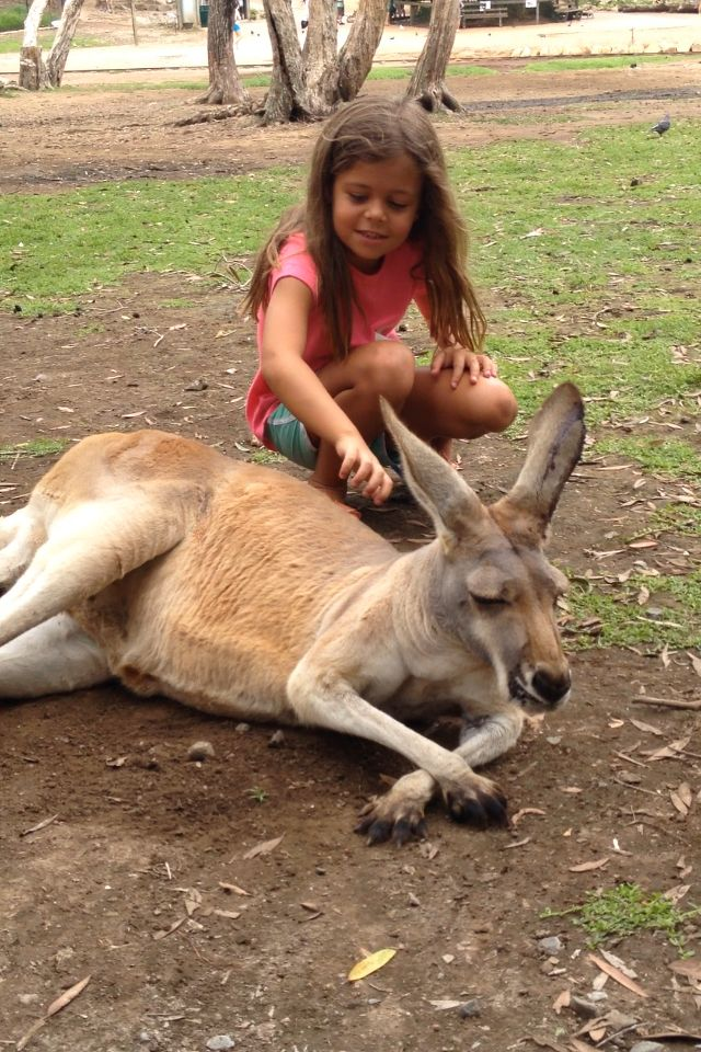 Playing with the Roo..