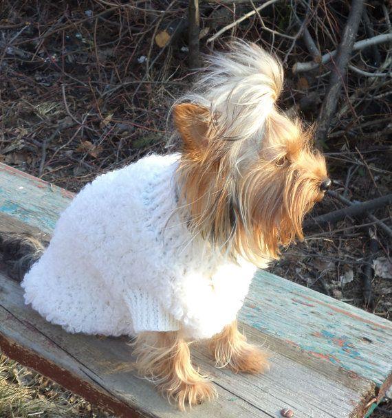 cane vestiti cane abbigliamento /pet di LyudmilaHandmade su Etsy