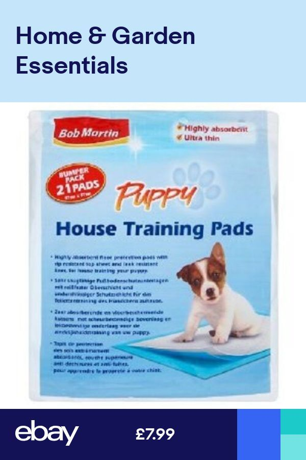 Bob Martin Puppy House Training Pads Pack Of 21 There Are Few Things As Fun And Rewarding As Having A Dog In Your L House Training Training Pads Puppy House