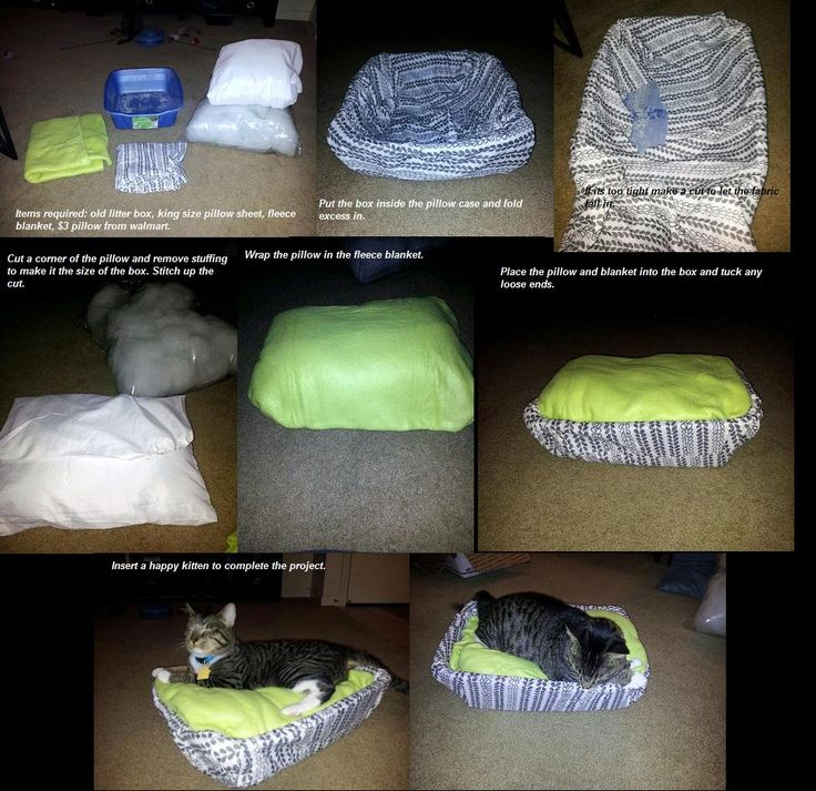 Diy Homemade Cat Bed Old Spare Litter Box Spare King Size Pillow Case Cheap Standard Pillow