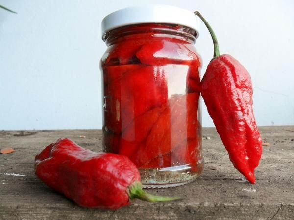 Aprenda a preparar pimenta em conserva com esta excelente e fácil receita. Se você é fã de comida ardida, não deixe de conhecer esta receita do TudoReceitas.com de...