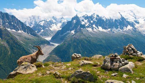 Una terrazza panoramica naturale da cui ammirare in tutta la sua maestosità il Monte Bianco, la montagna più alta d'Italia e d'Europa
