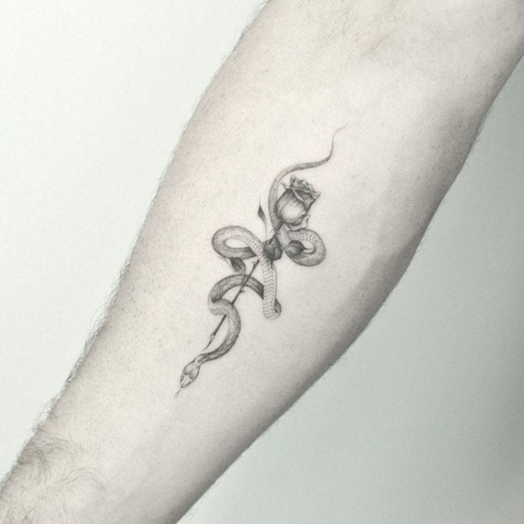 Single Needle Snake And Rose Tattoo By Kanenavasard Akanenavasard Kanenava Single Needle Snake In 2020 Single Needle Tattoo Small Snake Tattoo Snake Tattoo