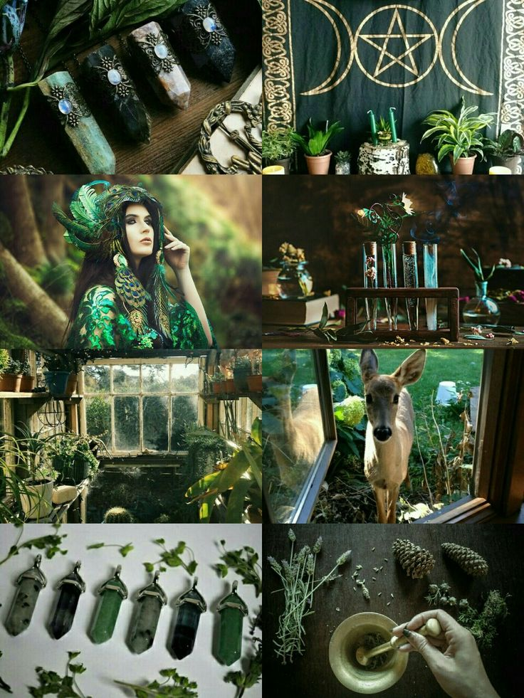 "demoniclour:  ""Green Witch aesthetic  """