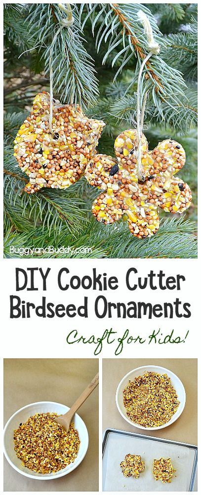 Adorable DIY birdseed ornaments for kids to make!