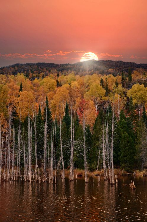 autumn sunset (no location) | Charles Gaudreault on flickr