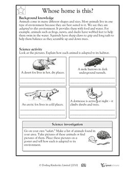 habitats science worksheets and animals on pinterest. Black Bedroom Furniture Sets. Home Design Ideas