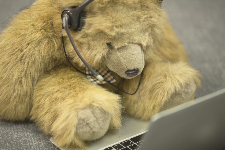 Go to our website to chat with a real teddy bear named David. He will answer all your questions about #ecigs