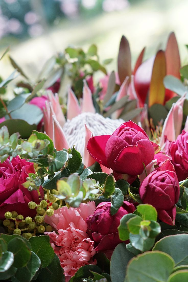 Native Bouquet with pops of Fuchsia, centered arround the king of all kings - a King Protea