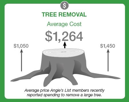 What is the average price to remove a large tree?
