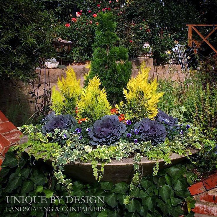 Unique Water Garden Design Ideas: 17 Best Images About CONTAINER GARDENING- UNIQUE BY DESIGN