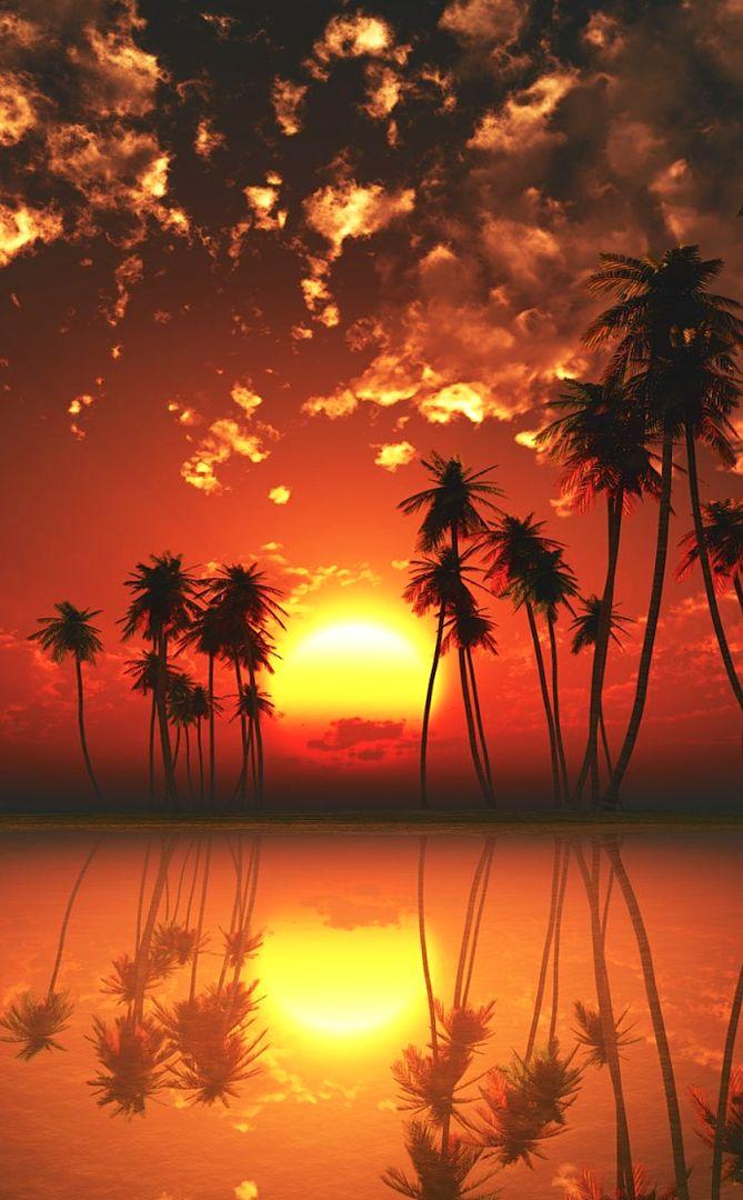 Foto: FIYI , IDÍLICA PUESTA DE SOL   Las islas que forman este maravilloso lugar parece tocado por los dioses y bien podría definirse como uno de los últimos paraísos vírgenes que aún quedan en el mundo.  Las Islas Fiyi son 333 islas situadas en el sur del Océano Pacífico que tienen preciosas playas, arrecifes de coral y selvas tropicales. La mayoría de la población vive en la isla más grande, Viti Levu, donde se encuentra Suva, la capital. Oficialmente la República de Fiyi , es un país…