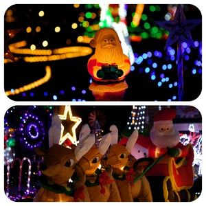 Christmas Lights - Mamma Knows West