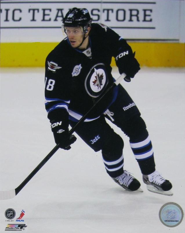 Winnipeg Jets - Bryan Little | NHL | Sports | Hardboards | Wall Decor | Pictures Frames and More | Winnipeg | Manitoba | MB | Canada