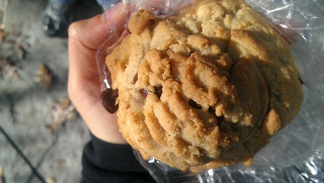 The famous chocolate chip cookie from Grandma's Cookies on Historic Main Street in St Charles MO