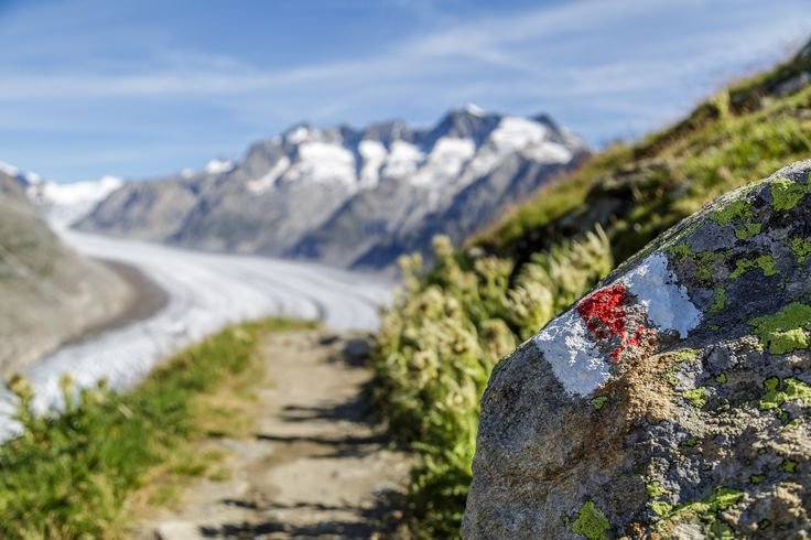 Roadtrip über den Grimselpass und durch das Oberwalliser Hochtal Goms mit Stopps bei der Goms Bridge in Bellwald und der Aletsch Panoramaweg Wanderung