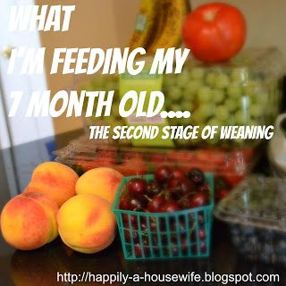 #babyledweaning feeding a seven month old, list of foods