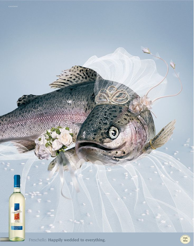 """Cielo e Terra Wine: Fish """"Happily wedded to everything"""""""