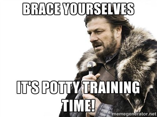 LOL! Potty training isn't easy, but these hilarious memes will make you laugh! http://thestir.cafemom.com/toddlers_preschoolers/184781/12_hilarious_truths_about_potty/129509/youre_a_warrior/9