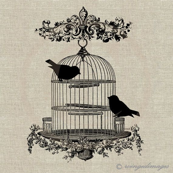 INSTANT DOWNLOAD Vintage Bird Cage Digital Image No.52 Iron-On Transfer to Fabric (burlap, linen) Paper Prints (cards, tags)