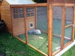 bunny rabbit shed