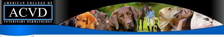 American College of Veterinary Dermatology