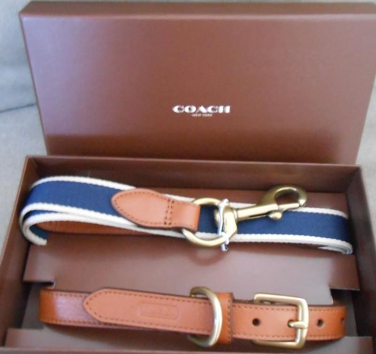 Coach Heritage Web Leather Dog Collar & Leash Set Medium F66034 Retal $148 #Coach